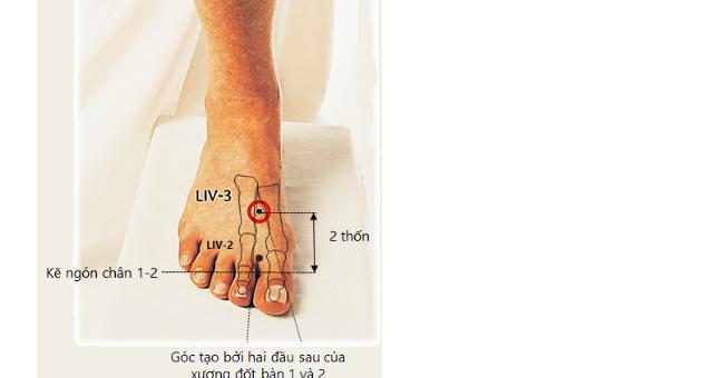 Massage chân đúng cách sẽ giúp thải độc gan tốt cho dạ dày