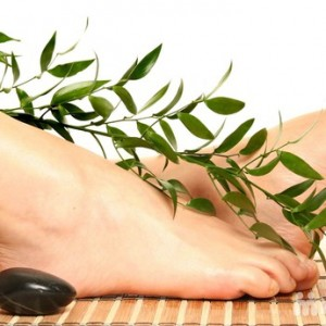 Massage chân Golden Lotus – 90 phút